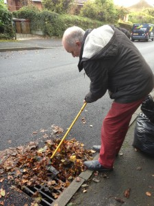 Cleaning leaves from gulleys